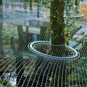 Stainless Steel Wire Rope Net for Anti-Falling Net pictures & photos