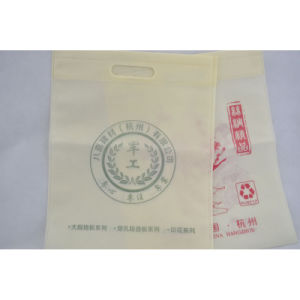 Eco-Friendly Non-Woven Bag for Shopping /Put Things Conveniently/Beautiful pictures & photos