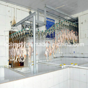 Complete Set Poultry Slaughter Line Machine pictures & photos