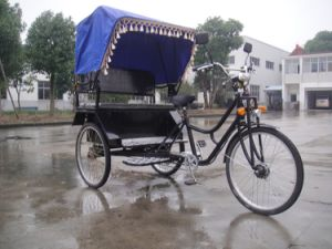 Cheap Fashion Indian Electric Tricycle Passenger Rickshaw 500W-800W (HDR500-3) pictures & photos