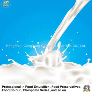 Good Food Ingredient Sodium Benzoate/ Benzoic Acid E210
