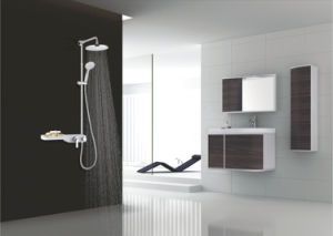 2015 Hot Sales Contemporary Bathroom Brass Shower Column (SF1201W)