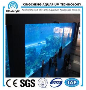 Acrylic Sheet Aquarium Project pictures & photos
