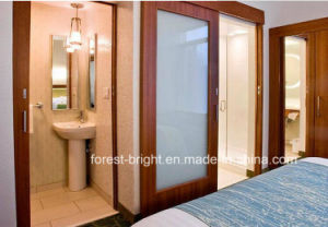 Springhill Suites Hotel Slide Bathroom Doors with Obscure Glass Insert pictures & photos