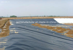 HDPE/LDPE/LLDPE Eomembrane Used in Environmental Protection pictures & photos
