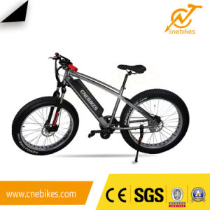 2017 26inch 750W Fat Tire MID Driving Motor Electric Bike pictures & photos