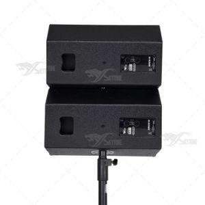 Skytone New Design 10 Inch Mini Line Array Speaker pictures & photos