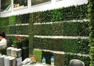 High Quality Artificial Plants and Flowers of Green Wall Gu-Wall102988837 pictures & photos