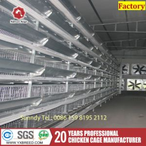 Zambia H Type Hot Galvanized Wire Netting Chicken Layer Cage for Sale pictures & photos