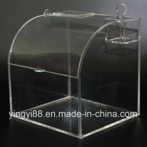 High Quality Acrylic Candy Container for Sale pictures & photos
