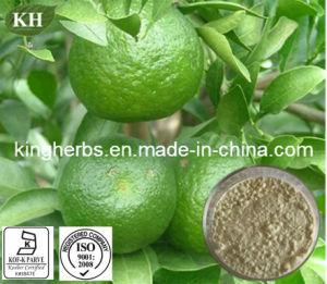 Pure Natural Citrus Aurantium Extract Hesperidin; Citrus Bioflavonoid; Synephrine pictures & photos
