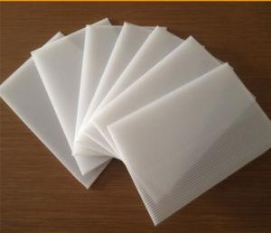 Coroplast PP Material Corrugated Correx Plastics Sheet pictures & photos