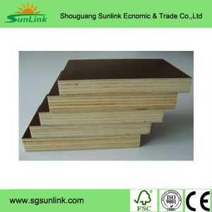 Professional Marine Plywood Manufacturer in Shouguang pictures & photos