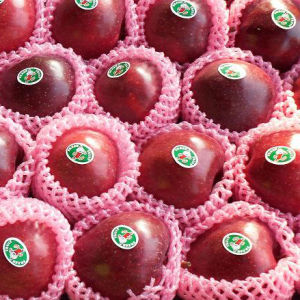 Global Gap for Chinese Fresh Red Huaniu Apple pictures & photos