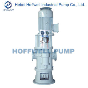 CE Approved 2W. W6.9 Vertical Twin Screw Pump pictures & photos