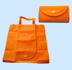 Non Woven Bag (XT-B026) pictures & photos