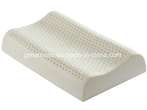 Latex Contour Massage Pillow with Comfort Cover Hypoallergenic