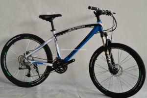 MTB Bike (WT-26403) pictures & photos