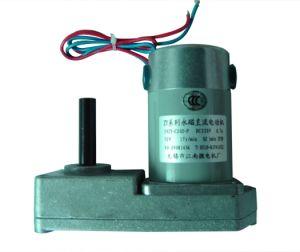 PMDC Motor 59zy-Cj-P