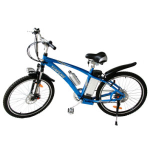 Electric Bike (TDH161-02Z)