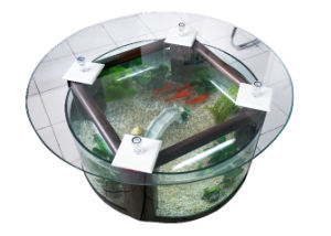 Glass Tea Table Aquariums/Tea Table Fish Tanks (D950*H525 mm)