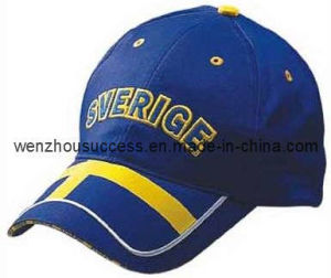 Baseball Cap (SS10-SV010) pictures & photos