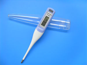 Rigid or Flexibledigital Thermometer with Ce & ISO pictures & photos