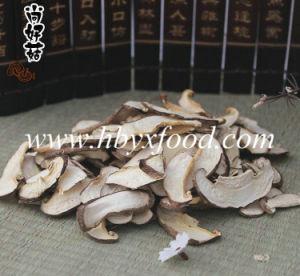 Dried Boletus/Porcini Edulis Mushroom Slices pictures & photos
