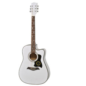 Acoustic Guitar (AGW4107C)