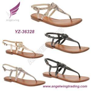 Lady Flat Sandals (YZ-36328)