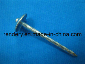 Screw/Umbrella Head Roofing Nail pictures & photos