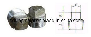 Stainless Steel Threaded Square Head Plug pictures & photos
