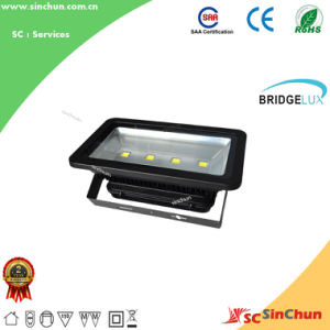 Outdoor Die-Casted Aluminum 200W LED Floodlight with Bridgelux Chip IP65