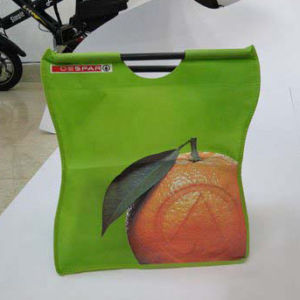 2016 New style PP Non Woven Bag with Competitive Price pictures & photos