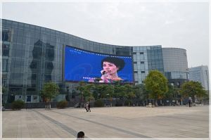 Outdoor Full Color LED Display (P10) pictures & photos