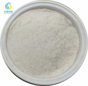 Common Spongilla Powder Only Contains Low Than 20% pictures & photos
