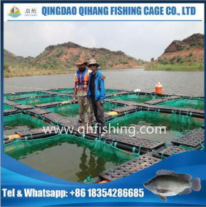 Fish Farming Cage with PE/Nylon Net pictures & photos