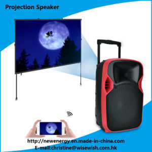 Professional 12 Inches Loudspeaker with LED Projector and Projection Screen