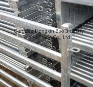 Hot-DIP Galvanized Crowd Control Barrier/Temporary Fence pictures & photos