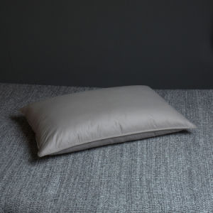 Teflon Waterproof Cover White Goose Down Pillow and Cushions pictures & photos