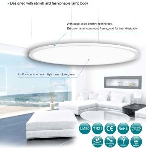 Suspended Circular LED Light LED Panel Ceiling, Commercial Round LED Pendant Lamp pictures & photos