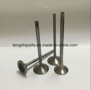 Inlet Valve/Exhaust Valve for BMW pictures & photos
