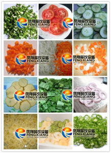 FC-301 Multi-Functional Vegetable Fruit Cutting Machine (4 in 1) pictures & photos