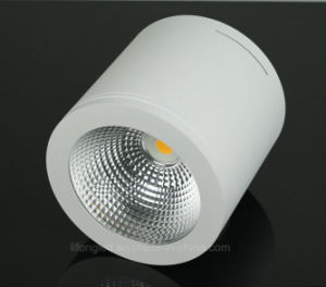 25W Surface Mounted LED COB Downlight with Ce RoHS SAA pictures & photos