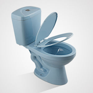 China Porcelain Cheap Price Siphonic Two Piece Toilet pictures & photos