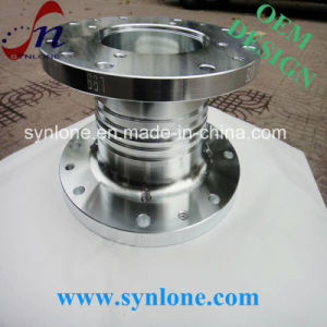 Stainless Steel Forging Galvanize Insert Shaft pictures & photos