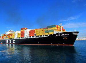 Ningbo/China Shipping Agent / Logistics Service to Rio-Grande Saivador Sepetiba Brazil pictures & photos
