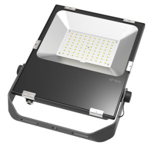 5 Years Warranty 80W Driverless LED Flood Light 4kv Surge Protection pictures & photos