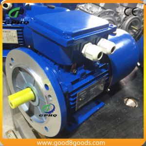7.5HP Three Phase Brake Motor pictures & photos