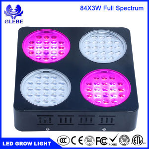 Glebe LED Plant Grow Light 150W Full Spectrum Lamp with Anti-Fire Casing for Greenhouse Hydroponic Plant Growth pictures & photos